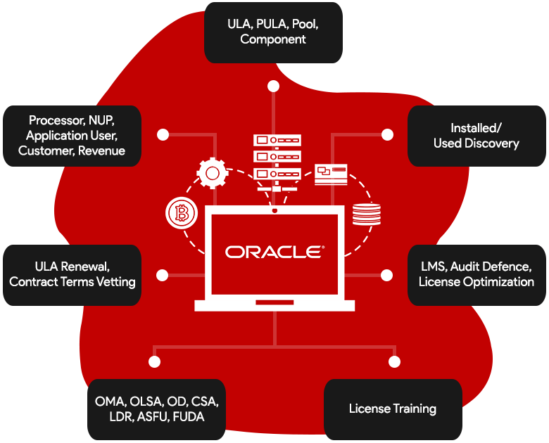 Oracle License Audit